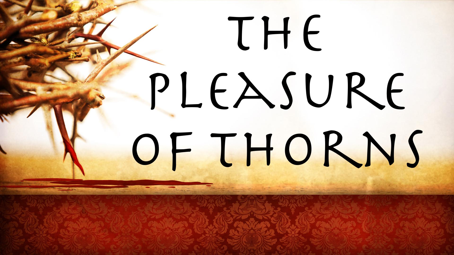 Pleasure of Thorns.001