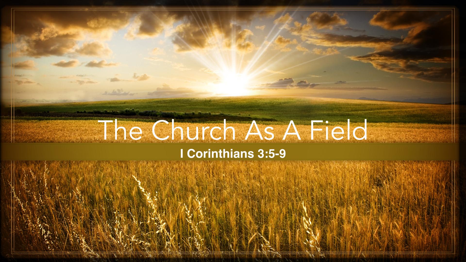 Church is a field.001